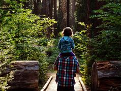 Calaveras Big Trees State Park Recreation