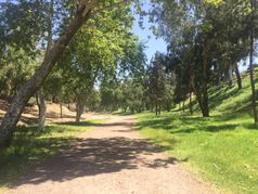 Hiking Trails Near Mission Oaks Park
